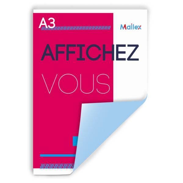 AFFICHAGE-a3